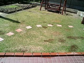ガーデニング・芝生1